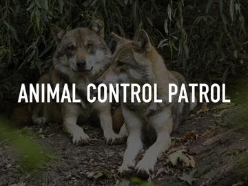 Animal Control Patrol