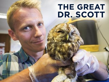 The Great Dr. Scott