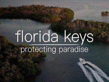 Florida Keys: Protecting Paradise