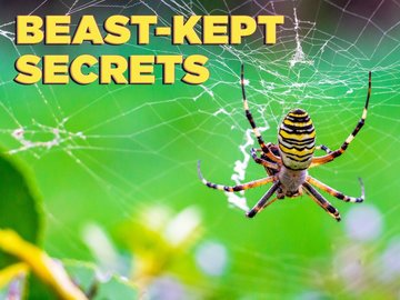 Beast-Kept Secrets