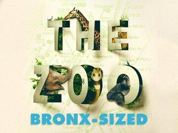 The Zoo: Bronx-Sized