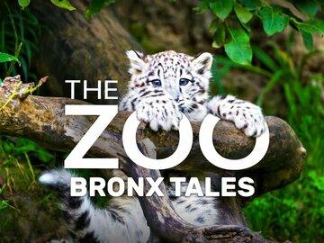 The Zoo: Bronx Tales